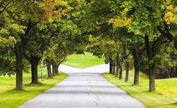 pad splitst als symbool voor echtscheiding